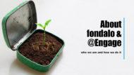 about fondalo
