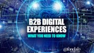 B2B Digital Experiences – What You Need To Know